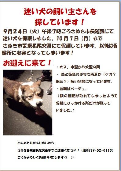 f0195259_7173966.jpg