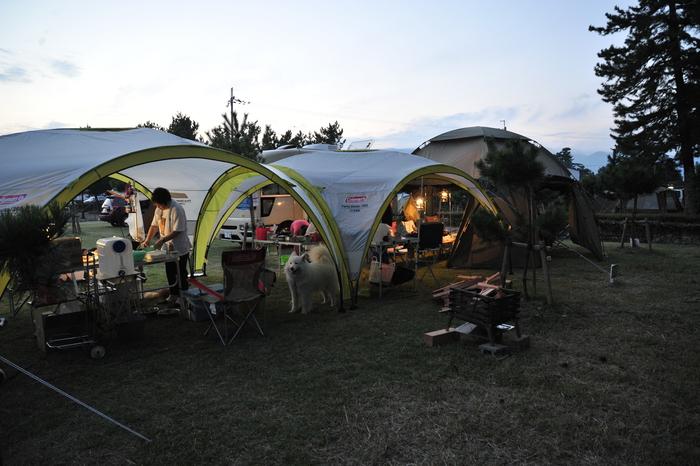 知内浜キャンプ part4_a0049296_8343783.jpg