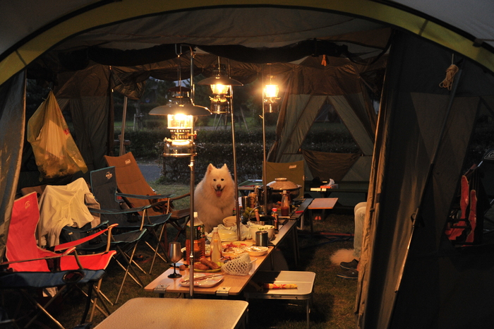 知内浜キャンプ part4_a0049296_8345885.jpg