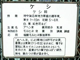 d0051601_1951872.jpg