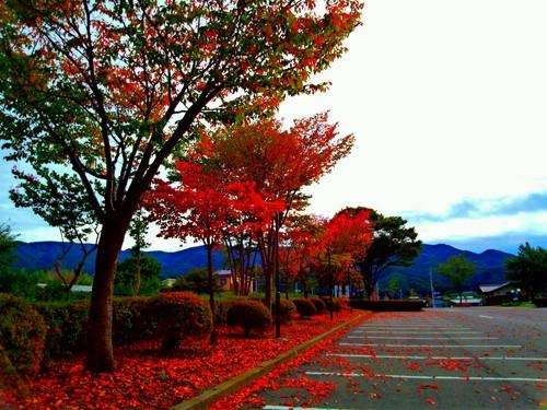 10月のお休み_d0148408_1503434.jpg