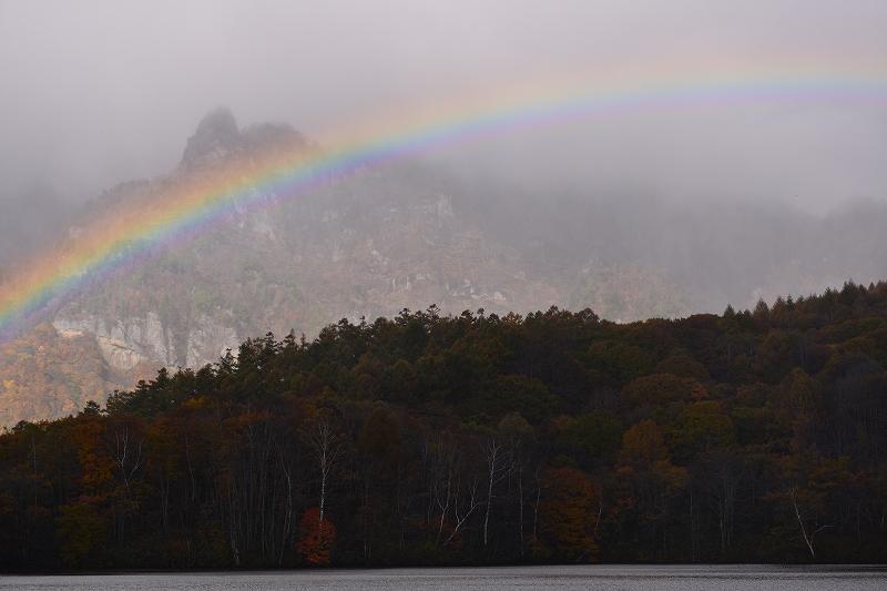 秋の晴天、でもアンラッキーな一日_f0050534_11135641.jpg