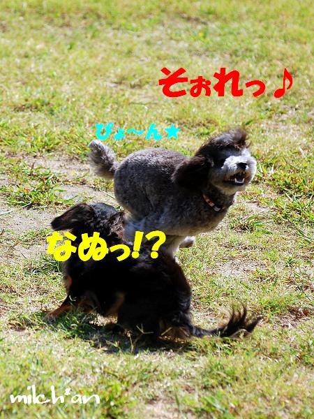 b0115642_21225574.jpg
