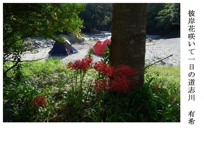 道志川キャンプ 後編_a0248481_2202215.jpg