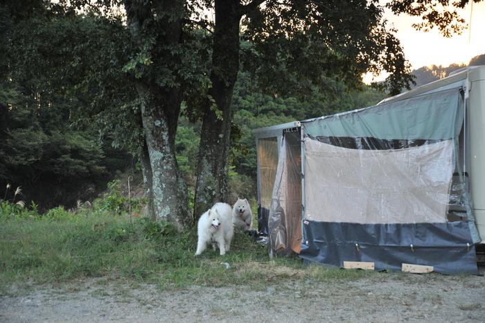 884キャンプ場に行ってきました!!_a0049296_19132566.jpg