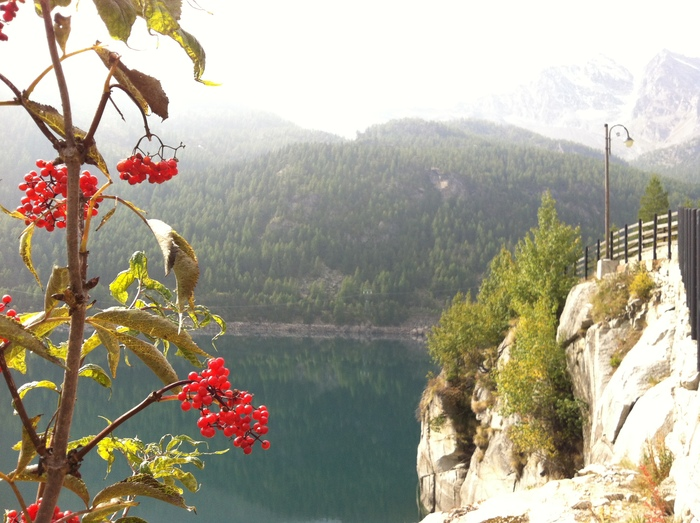 グラン パラディーゾ国立公園の湖で秋散歩🍁 Lago di Ceresole _b0246303_23423093.jpg