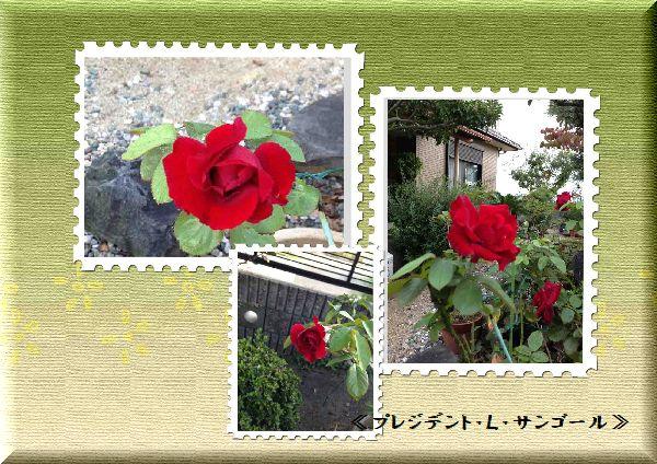 b0126308_19595249.jpg