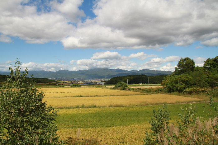 秋風景_a0071514_18402941.jpg