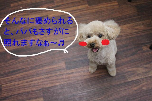 b0130018_8214966.jpg