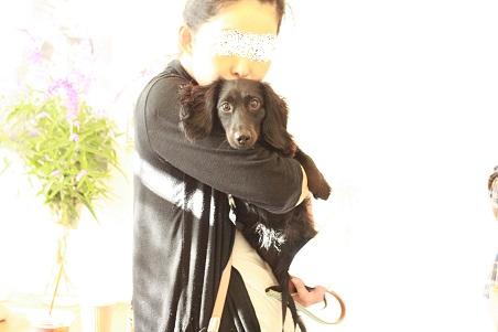 NICE DOG マルシェ♪2_b0174042_2059383.jpg