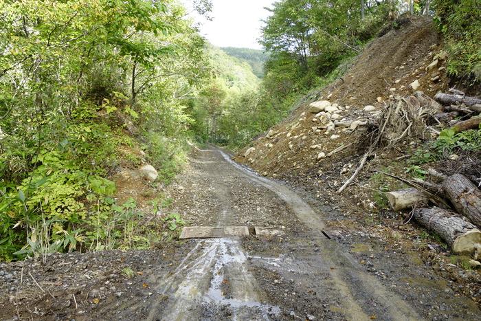 鉱山グリーンレース2013_f0114954_12324284.jpg