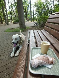 with  dog   日曜日の公園へ♪_a0165160_6215152.jpg