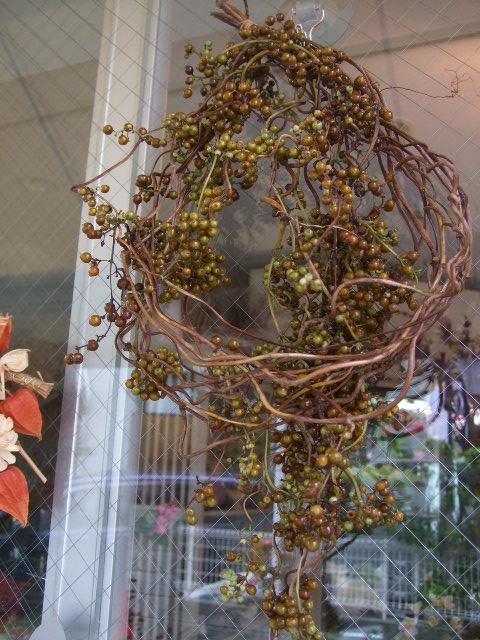 オークリーフ(秋色紫陽花、そしてコスモス)_f0049672_16171766.jpg