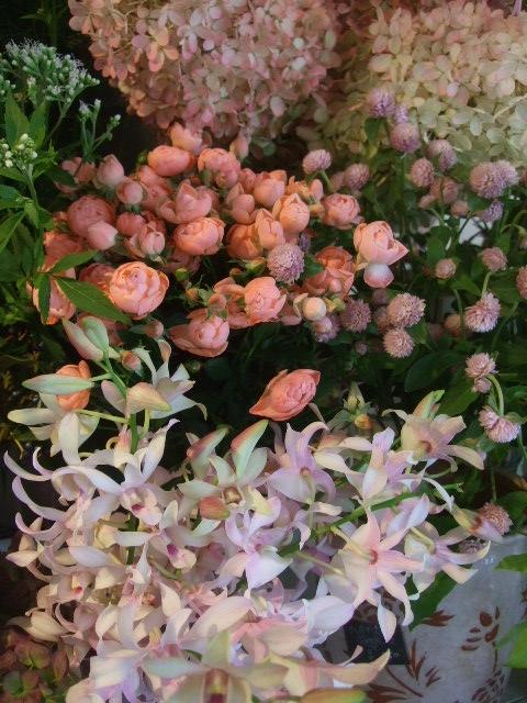 オークリーフ(秋色紫陽花、そしてコスモス)_f0049672_1655322.jpg