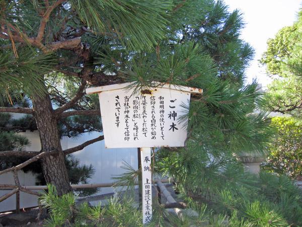 和田神社(和田岬)_a0045381_8322712.jpg