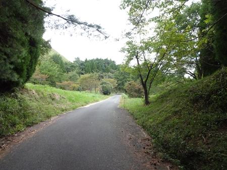 阿蘇へ行ってきました_e0201281_2221578.jpg