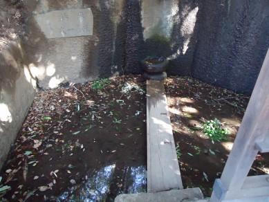 板橋区赤塚の「不動の滝」 を散策_c0223192_18254422.jpg