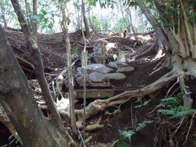 板橋区赤塚の「不動の滝」 を散策_c0223192_18273586.jpg