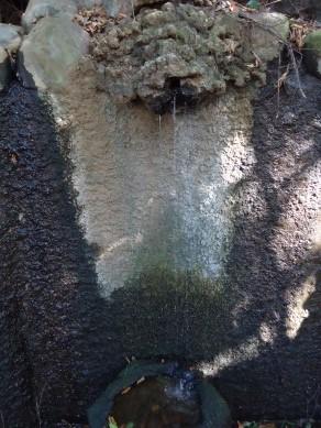 板橋区赤塚の「不動の滝」 を散策_c0223192_18305471.jpg