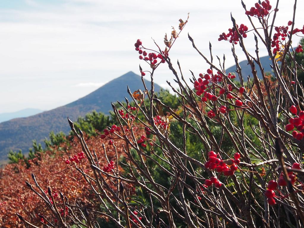 9月28日、新得コースから十勝岳-下山編-_f0138096_17401323.jpg