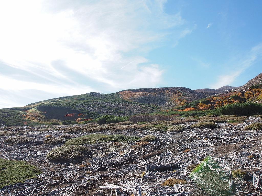 9月28日、新得コースから十勝岳-下山編-_f0138096_1740217.jpg