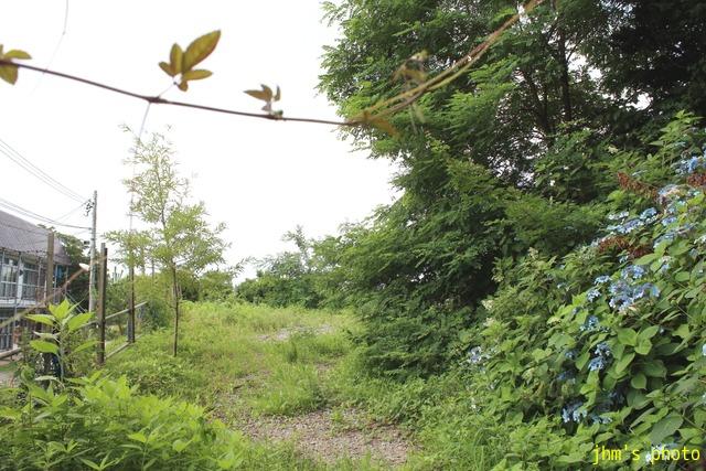 函館古建築物地図(船見町3番)_a0158797_2347829.jpg