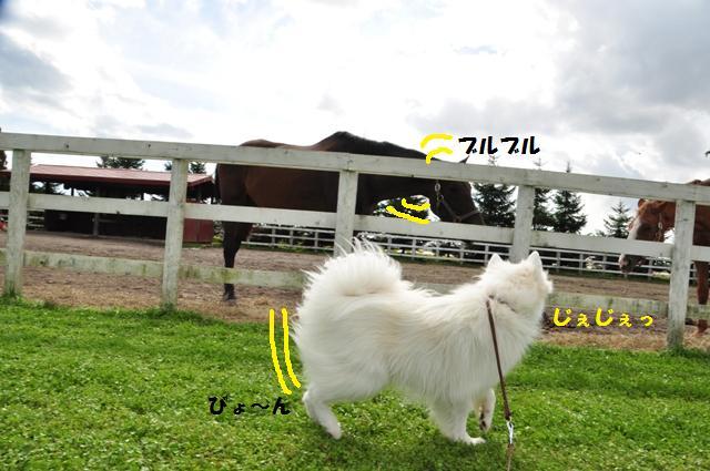 f0212597_17371283.jpg