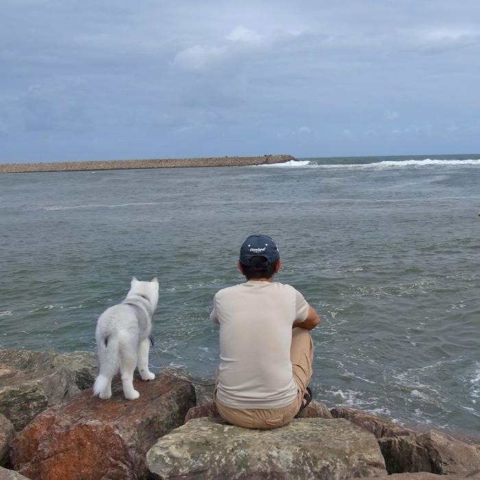 子犬 海辺のアルバム_c0049299_10261933.jpg