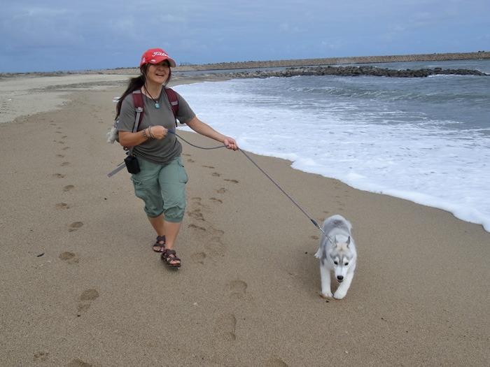 子犬 海辺のアルバム_c0049299_1029333.jpg