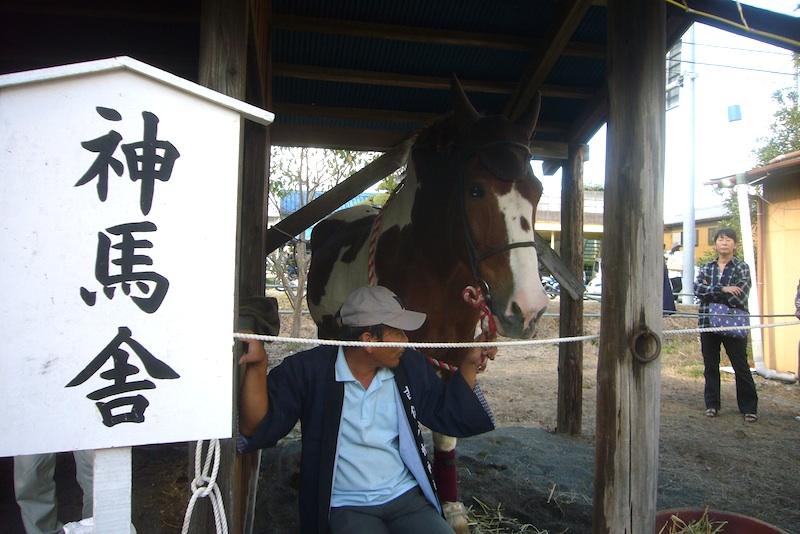 吉保八幡神社の流鏑馬(9月29日)_f0141559_6423827.jpg