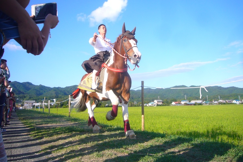 吉保八幡神社の流鏑馬(9月29日)_f0141559_6425533.jpg