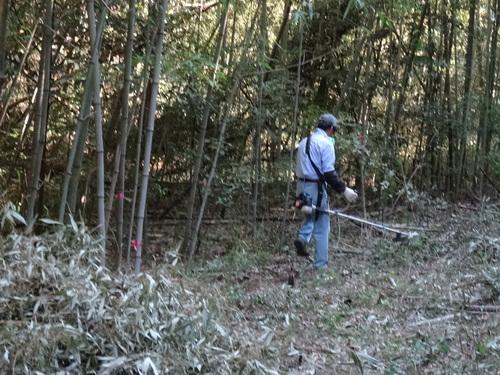 孝子の竹林でボランティア合流作業・・・第2回目_c0108460_2131528.jpg