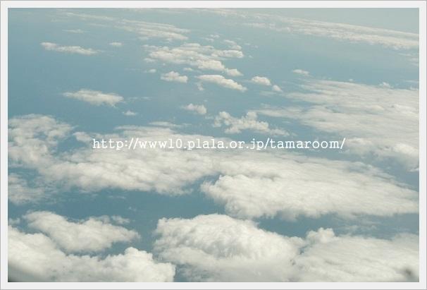 f0042599_7173588.jpg