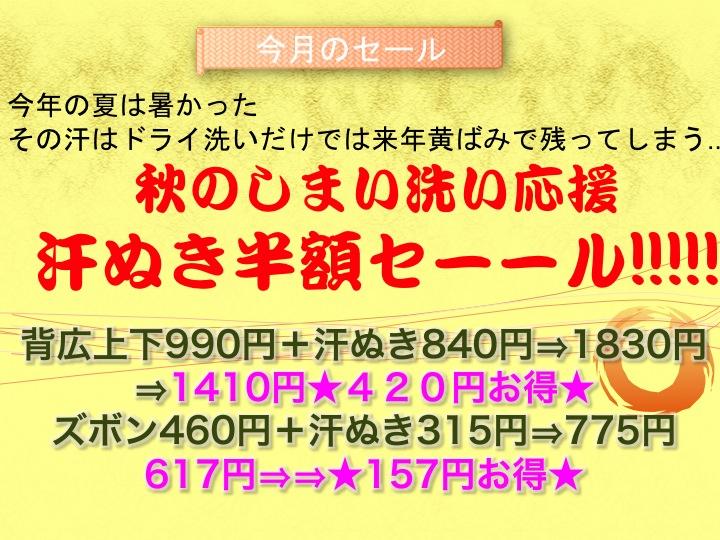 今週のお花とセール情報_a0200423_1275617.jpg