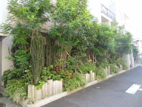 ご近所散歩-内と外の境界_e0264942_1421467.jpg