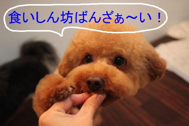 b0130018_22401327.jpg