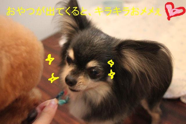 b0130018_2240615.jpg