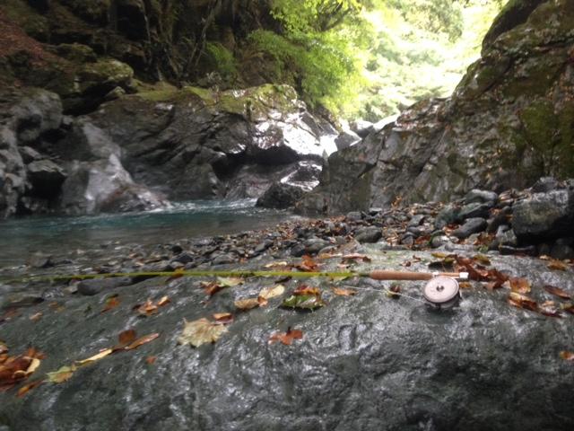 中津川水系 H川釣行_c0149633_19414790.jpg