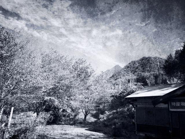 山ごもり合宿日誌10_f0247440_2214713.jpg