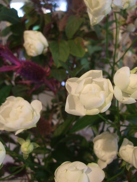 オークリーフ花の教室(赤地さんと宮原さんの作品)_f0049672_159577.jpg