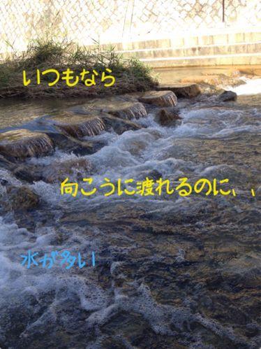 f0108606_14165834.jpg