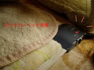 b0200310_1613940.jpg
