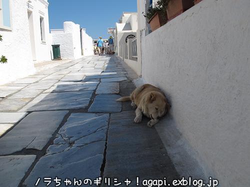ギリシャで着物を家で着る。_f0037264_10234857.jpg