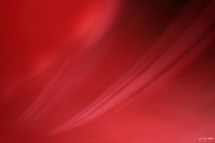 f0185802_22395399.jpg