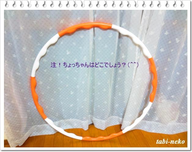 b0212305_1874010.jpg