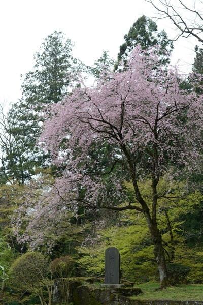 妙義神社 その2_b0304411_105409.jpg