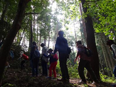 『第12回 ふるさと岡山の森を訪ねる旅』 後編レポート_b0211845_1931338.jpg