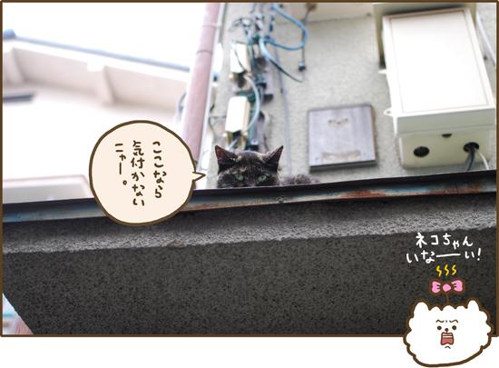 d0212419_2012781.jpg