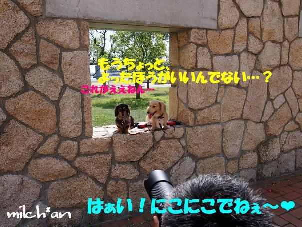 b0115642_22493276.jpg