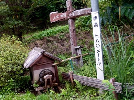 2013年9月『奥信州 幻のキノコ旅』【5】_e0071652_13212668.jpg